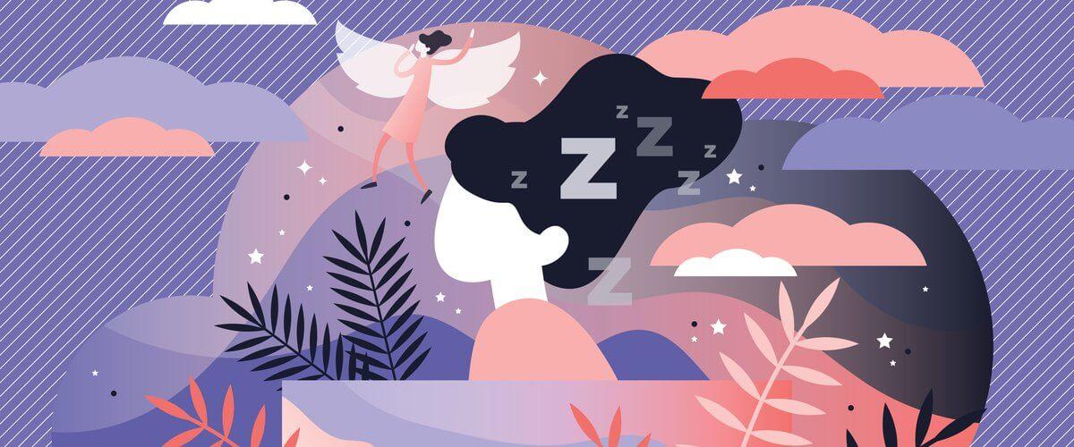 chu kỳ của giấc ngủ