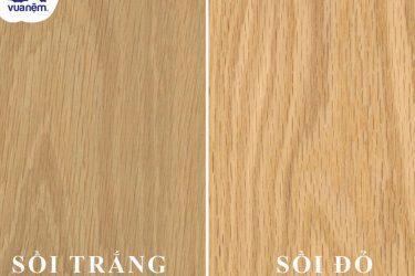 Từ A-Z những thông tin đầy đủ nhất về gỗ sồi