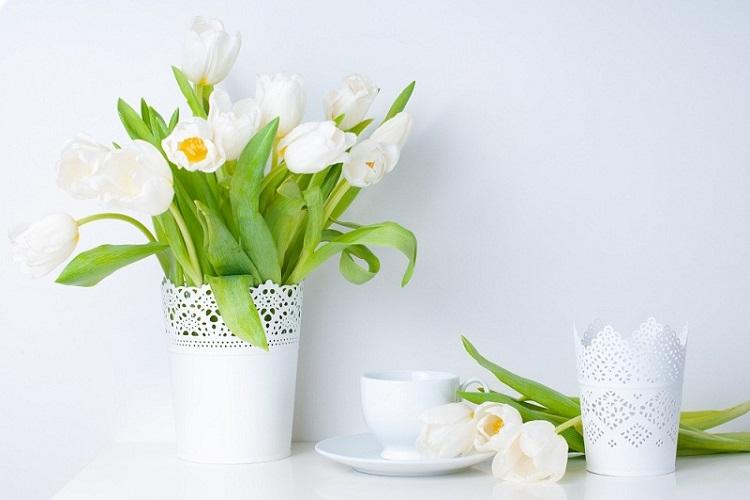Hoa phòng ngủ hợp ngũ hành