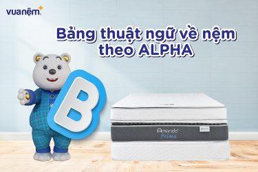 Bảng tổng hợp thuật ngữ về nệm theo Alpha B giúp bạn mua sắm dễ dàng